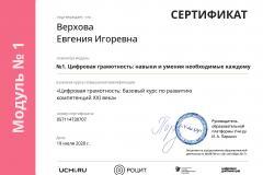 module_certificate_2020-08-03_22_33_03_MSK