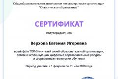 active_teacher_top_5_Verhova-Evgeniya-Igorevna.pdf