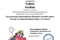 Diplom_Sofiya_Kolbaya_13708012-1
